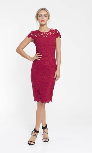 PINK RUBY Uptown Lace Dress Wine